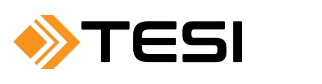 Logo: Tesi